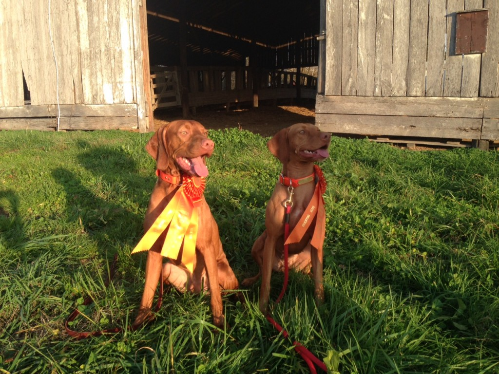 Zara and Archer modeling their ribbons.
