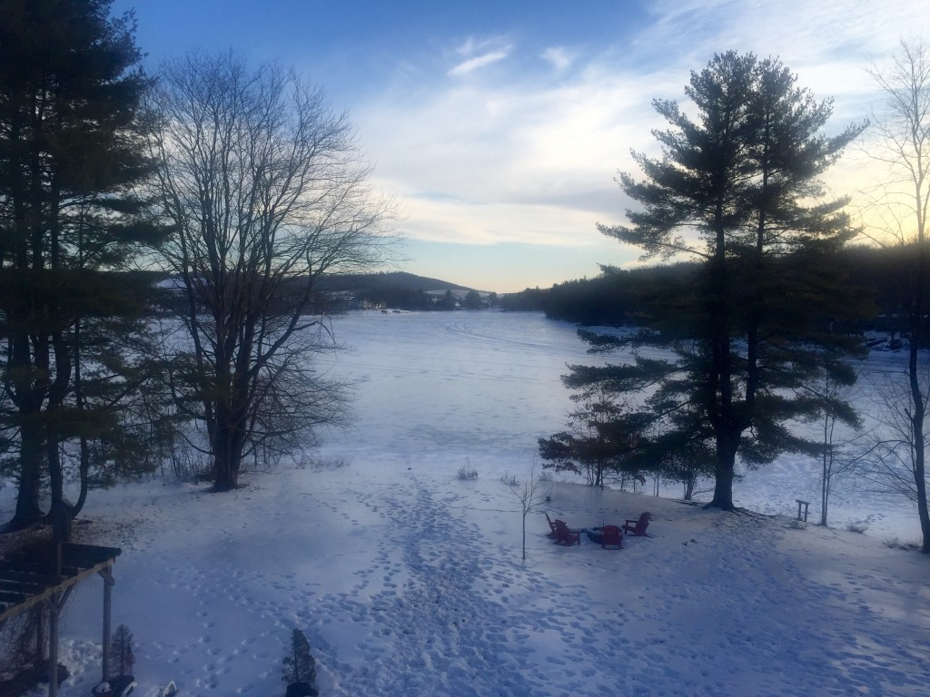 View of the back yard that led to the frozen lake! People were walking on the lake but I was afraid of going out there.