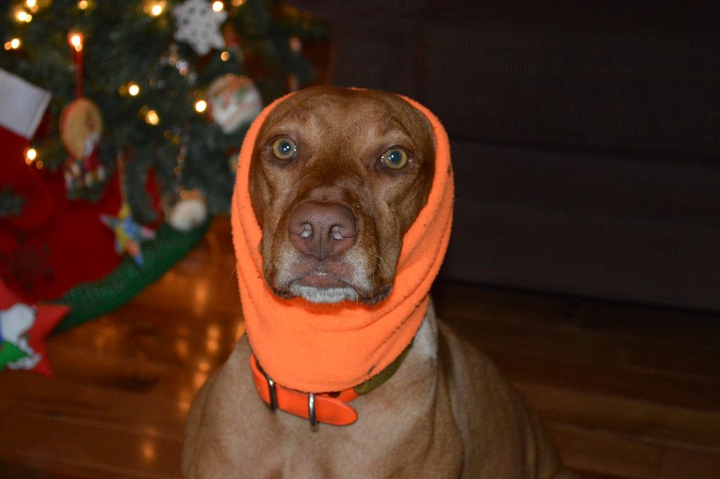 Zara as a babushka.