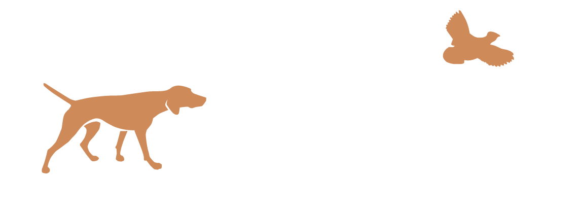 The Accidental Bird Dog