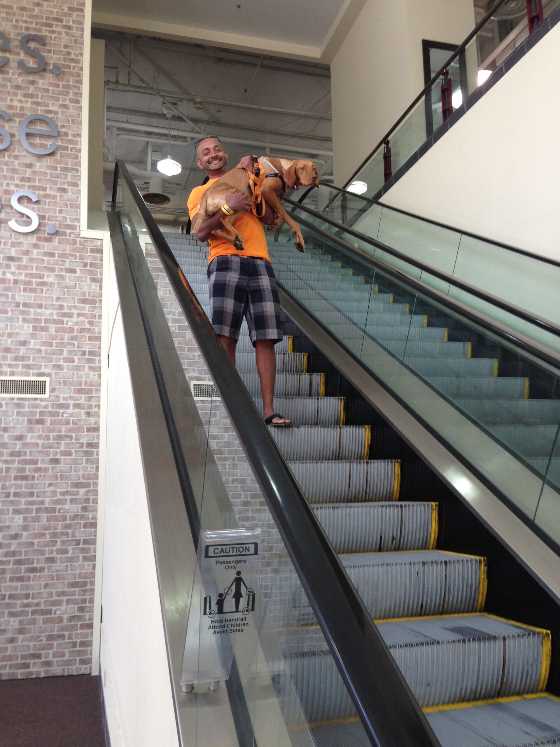 Zara on an escalator