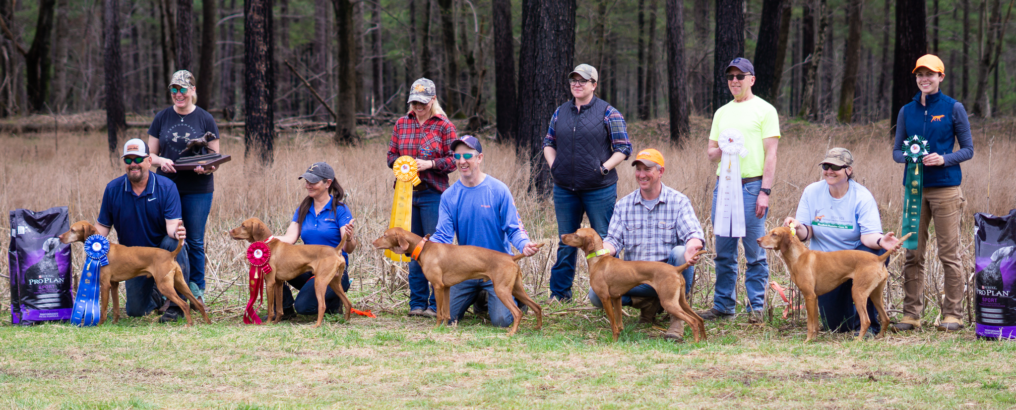 The line-up of placed dogs